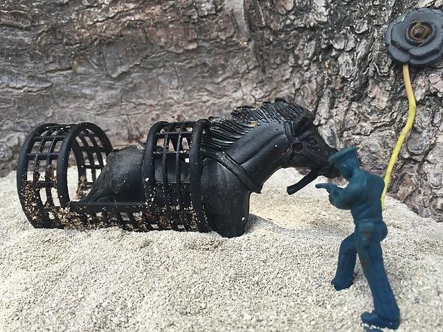 """""""Caged and cornered by plastic,"""" artwork created using plastic debris collected on the beach."""