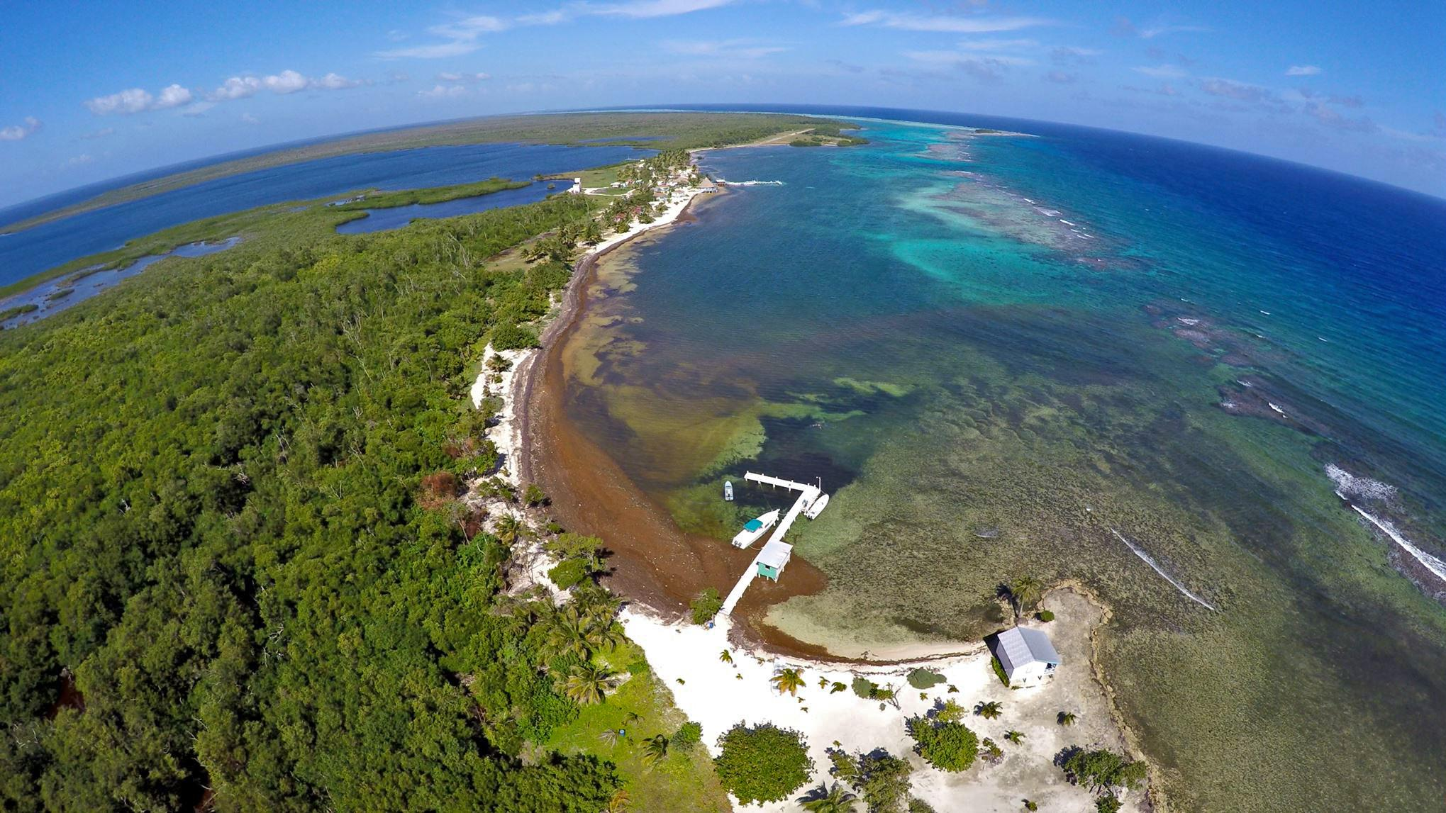 One of the first images of Blackbird Caye captured by a drone that is being used in dolphin research. © Eric Ramos