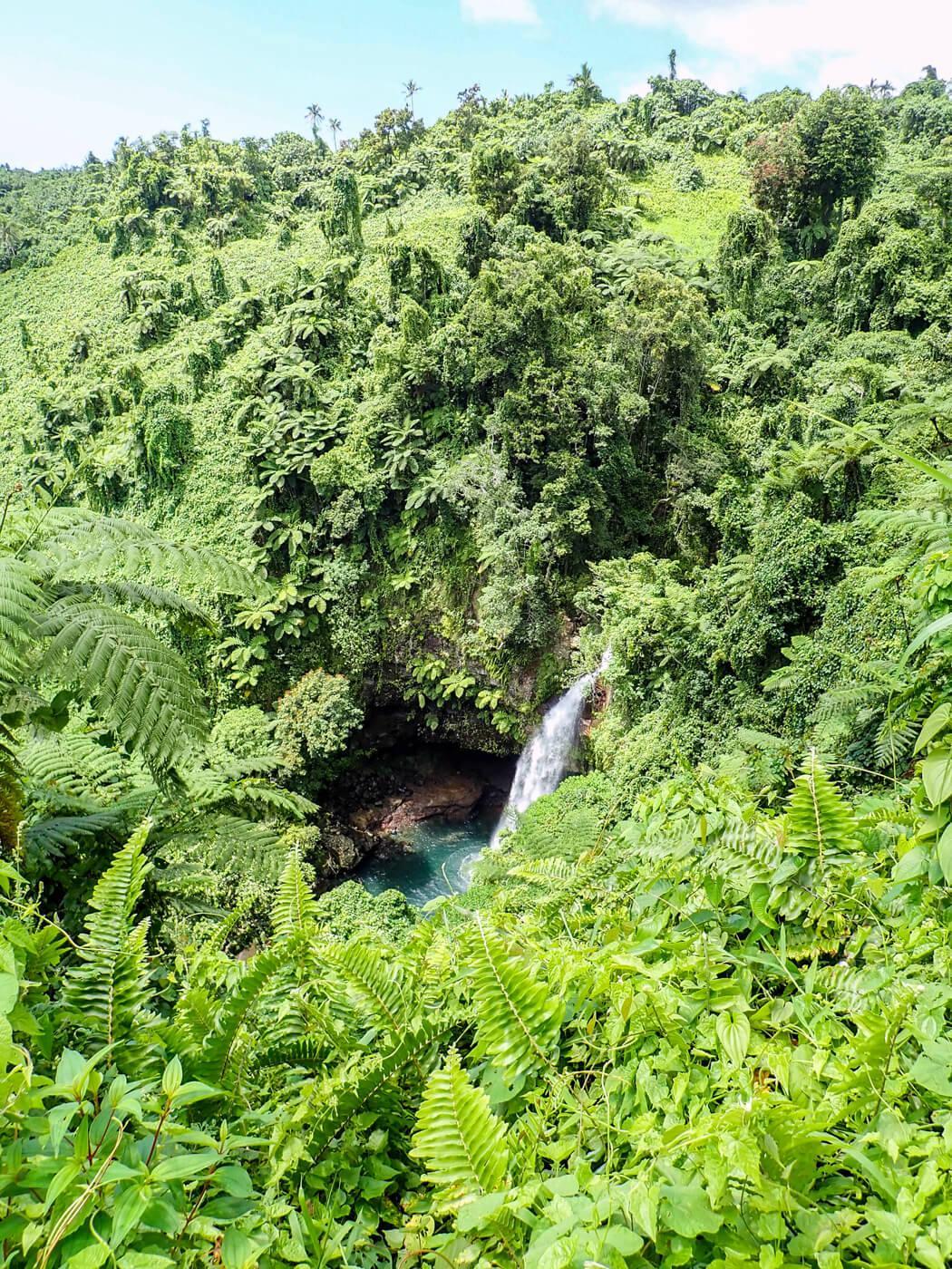 Bouma falls in Bouma National Heritage Park. © Roger Harris