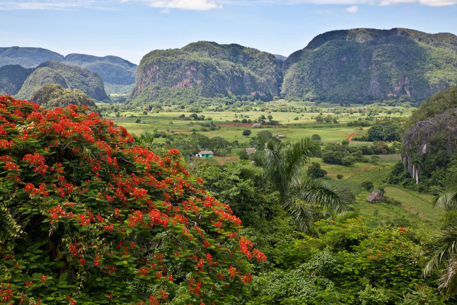 The beautiful Viñales Valley is a stop on our Cuba expedition in July. © Brian J Hutchinson