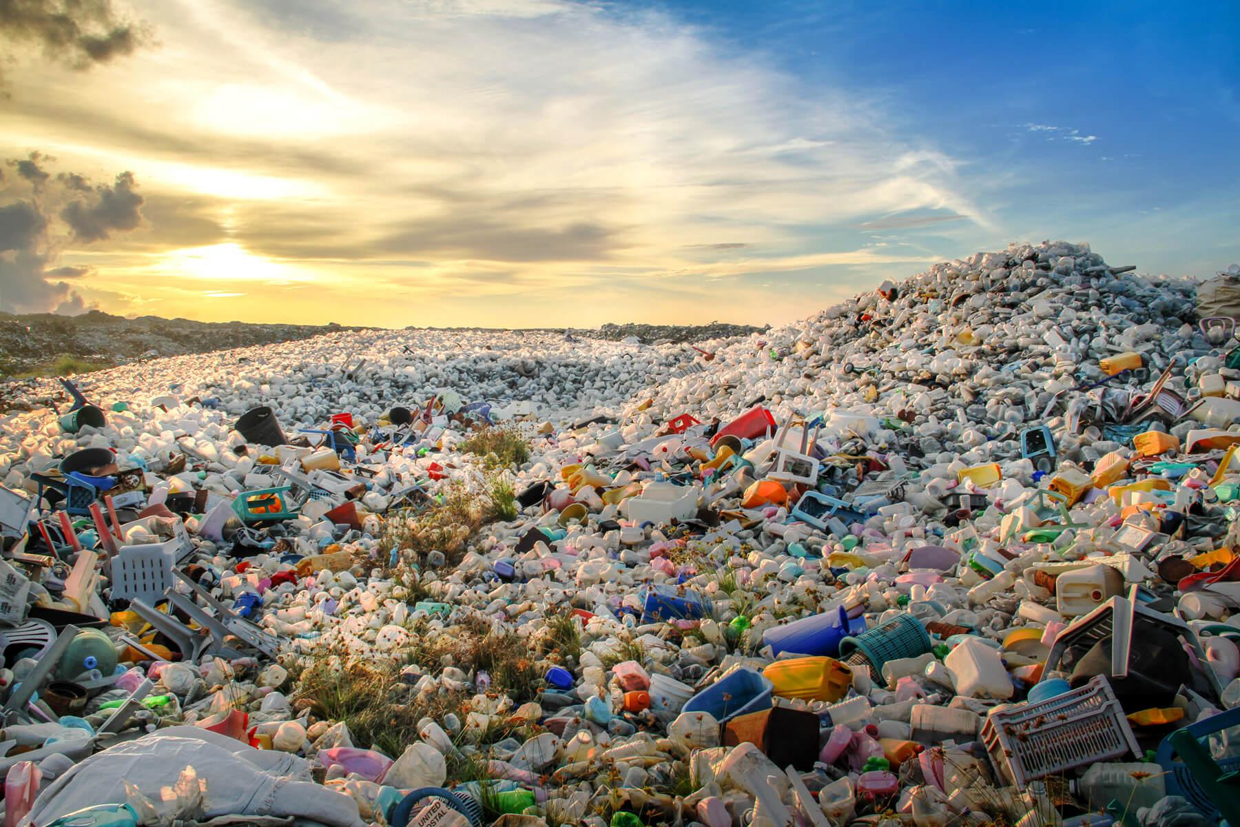 Plastic Pollution Solutions | Oceanic Society