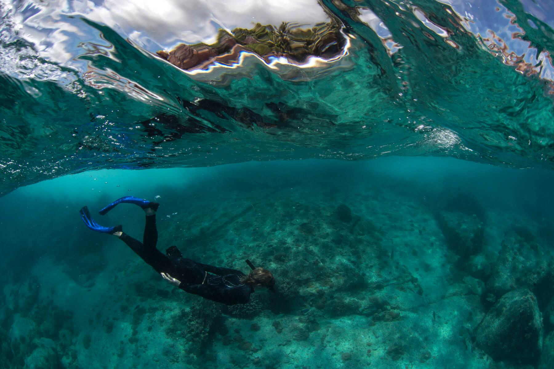 Rash guards, dive skins, and wetsuits reduce the need for sunscreen altogether. © The Ocean Agency