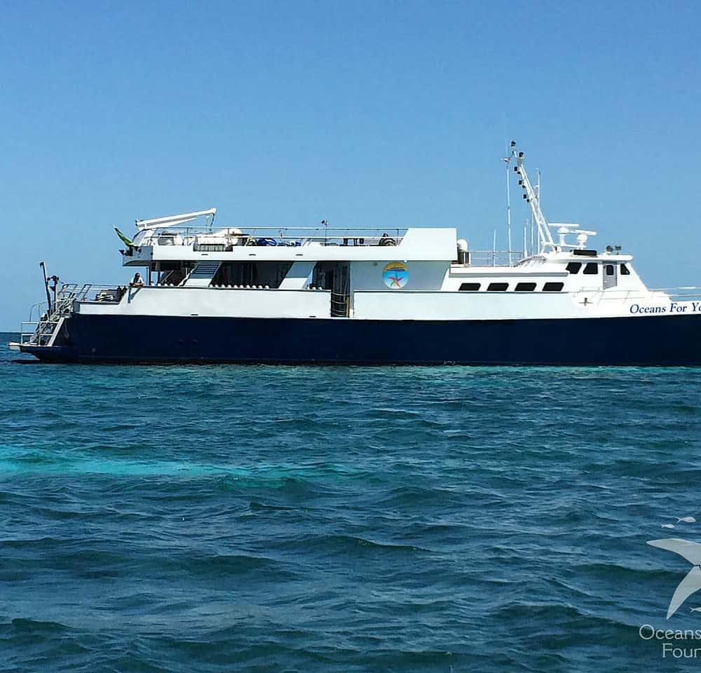 Cuba Liveaboard Snorkeling