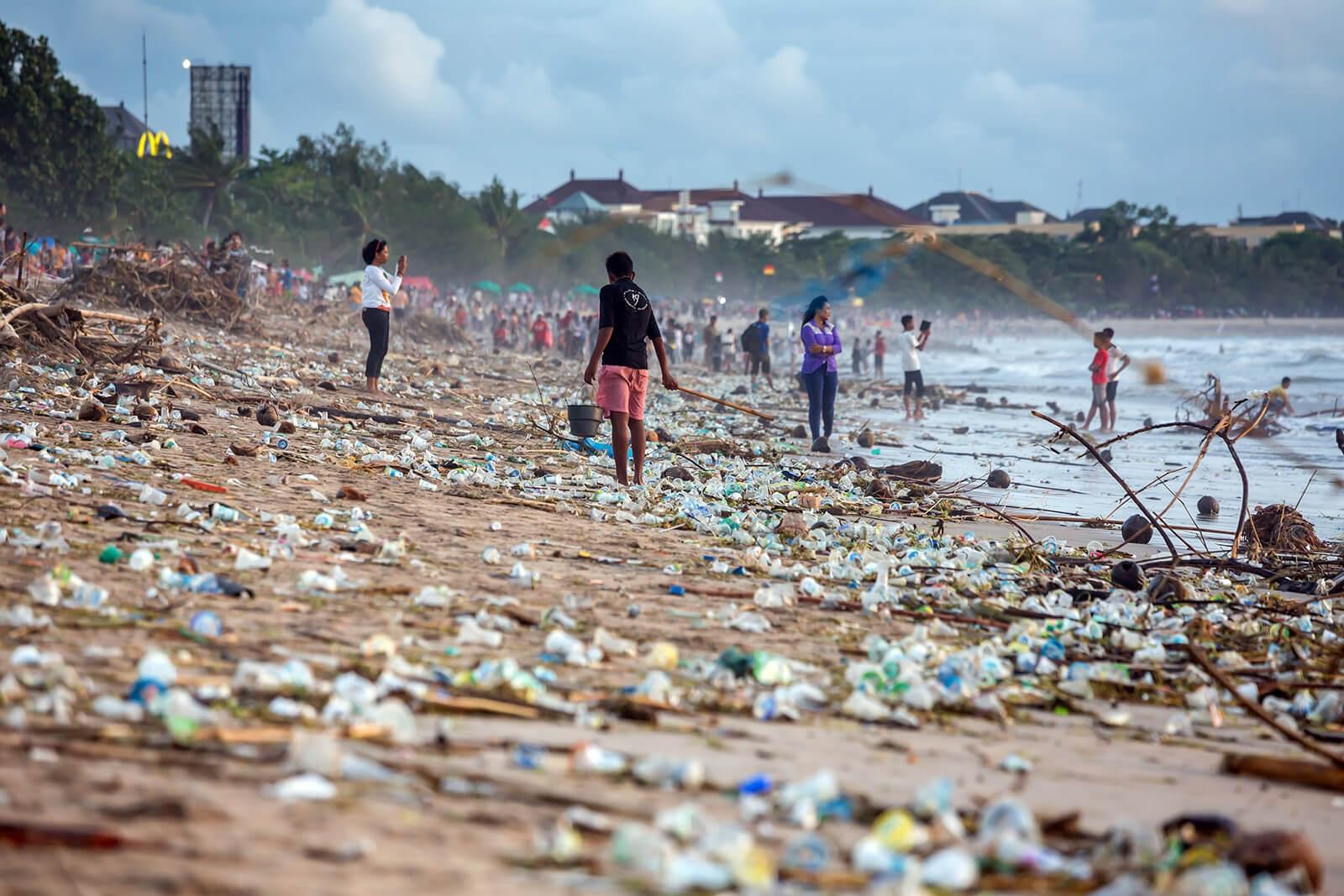 Our Blue Habits program targets everyday behaviors that impact ocean health, like plastic use.