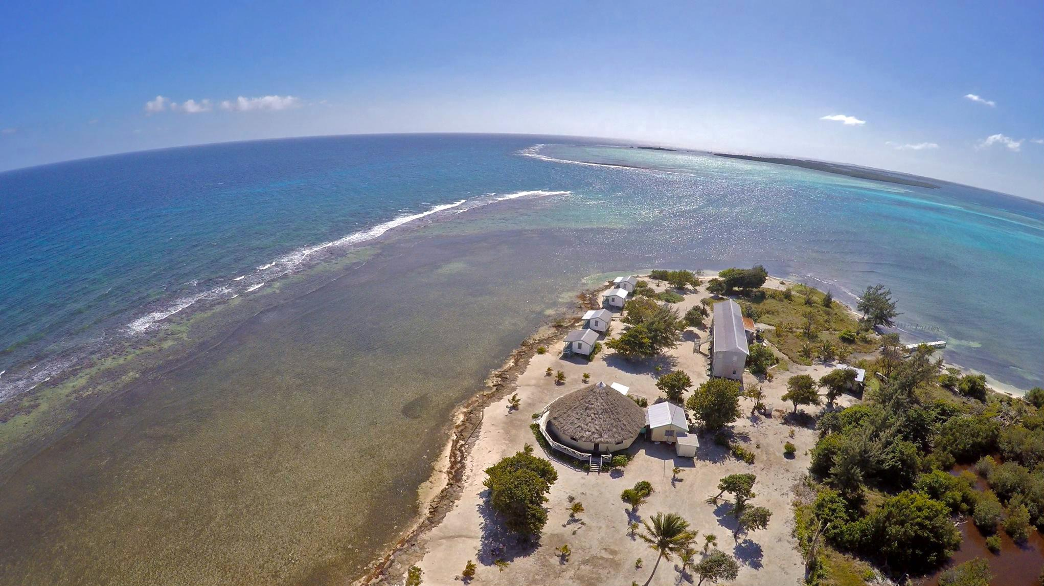 Flying high above our field station on Blackbird Caye. © Eric Ramos