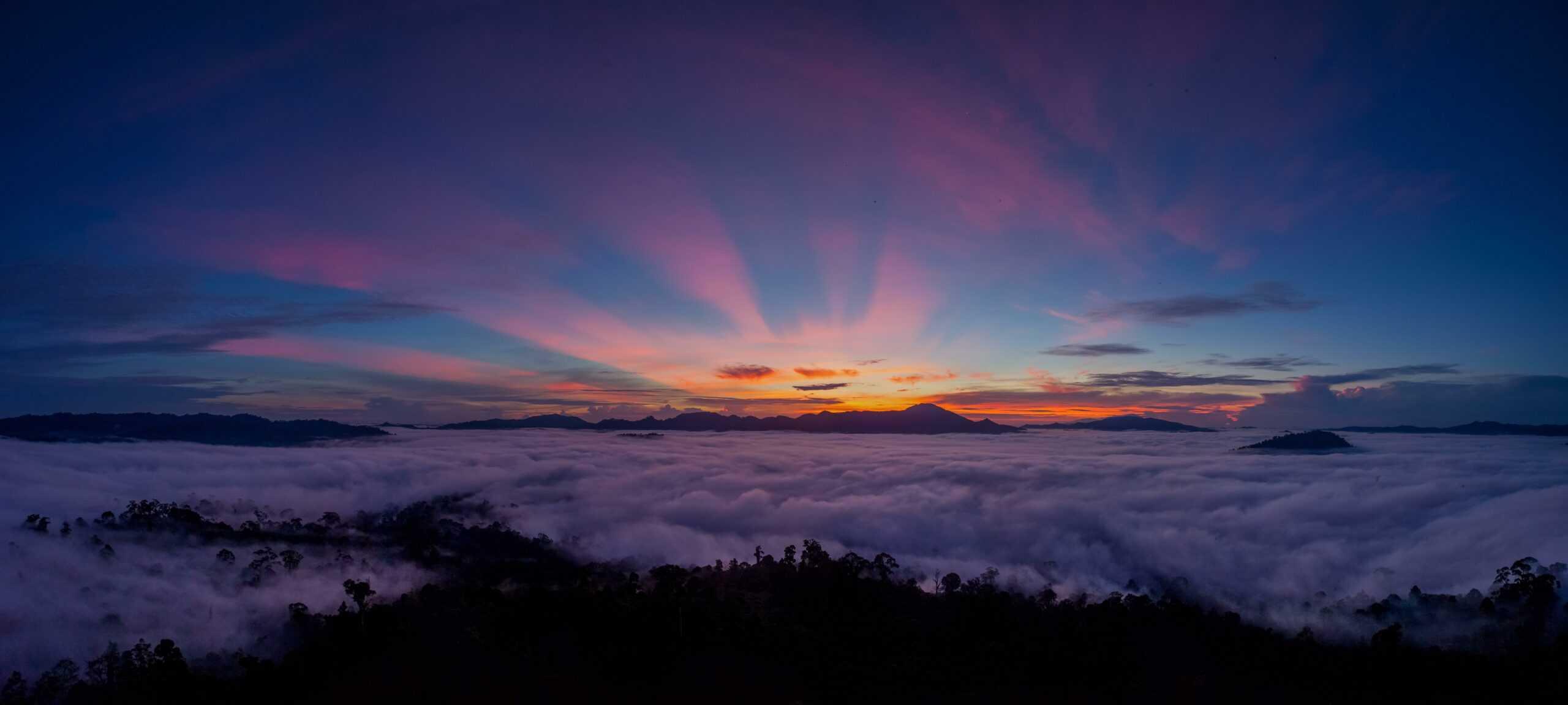 Danum Valley Borneo