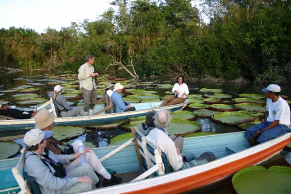 Tour to see giant water lily