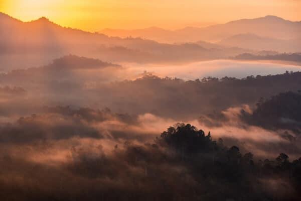 Danum Valley landscape