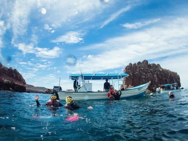 snorkeling near Isla Espiritu Santo