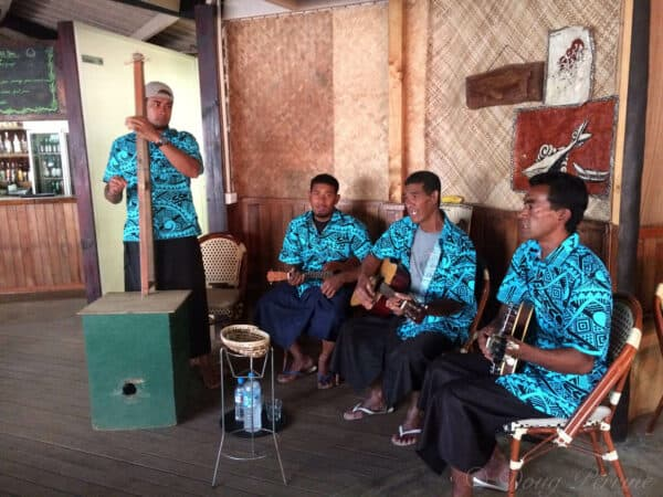 tongan musicians