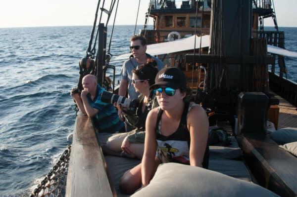 liveaboard whale patrol