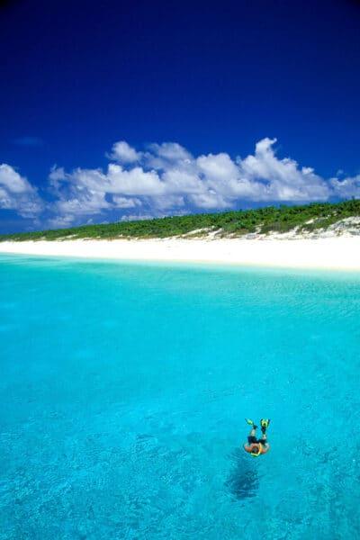 snorkeling on Bahamas cruise